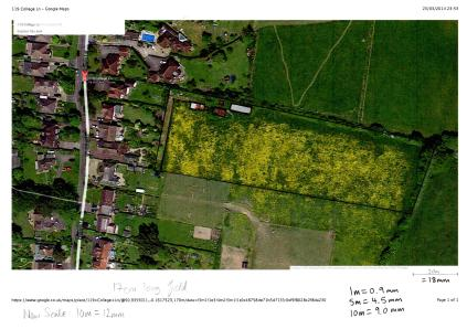 GoogleMaps satellite view of the field (you can see the buttercups!)
